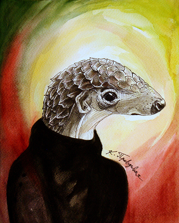 Critically Endangered Pangolin by Katerina Pravdivaia